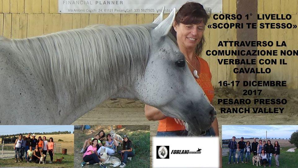 """16-17 Dicembre CORSO 1° Livello """"Scopri Te Stesso"""" Comunicazione attraverso l'uso del cavallo"""