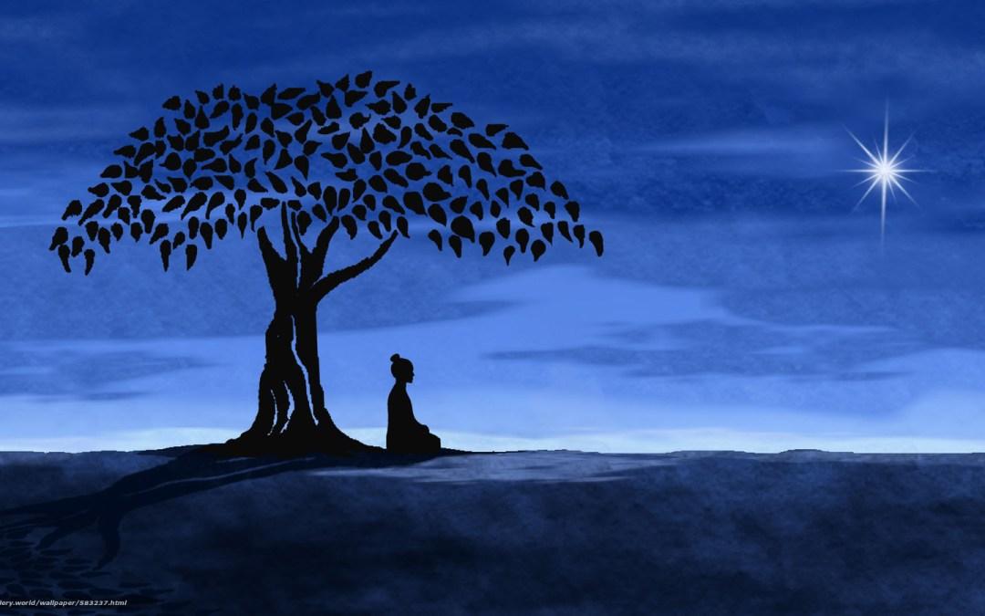 La Psicologia del Buddha.