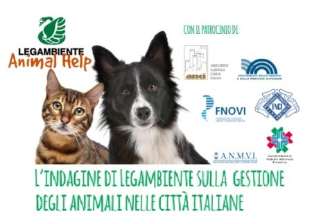 Risultati immagini per legambiente cani e gatti