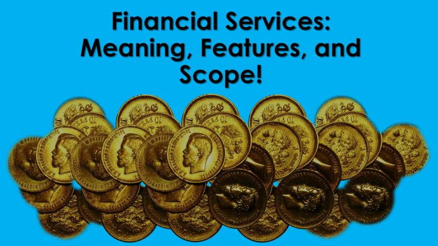 Financial Services Meaning Features and Scope