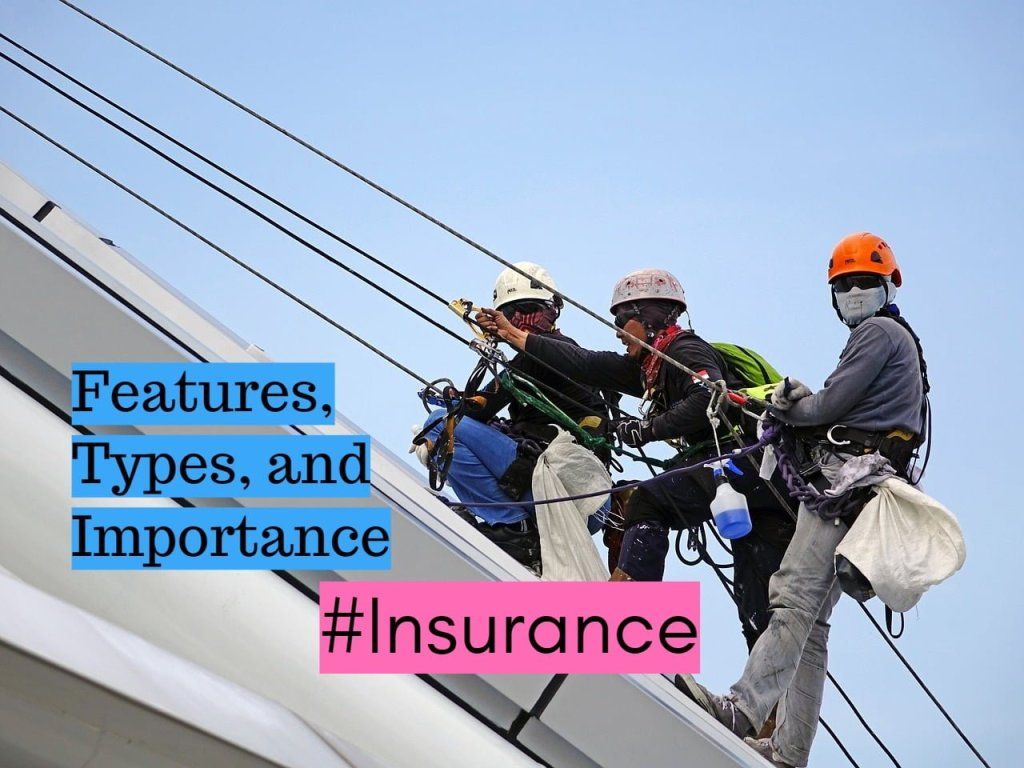 Features Types and Importance of Insurance