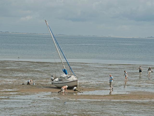 Ile de Ré Pêche à marée basse