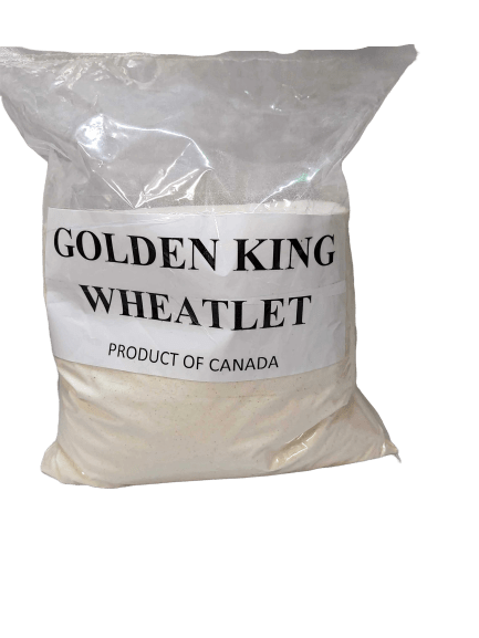 Golden_King_Wheatlet