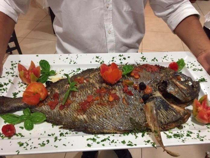 pesce castagna - il cliché a San Lucido
