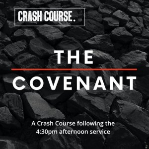 Crash Course on the covenants