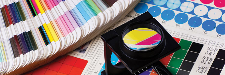 Grafica e tipografia