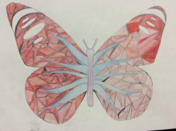 Ilfracombe Museum Butterfly Design Competition (62)