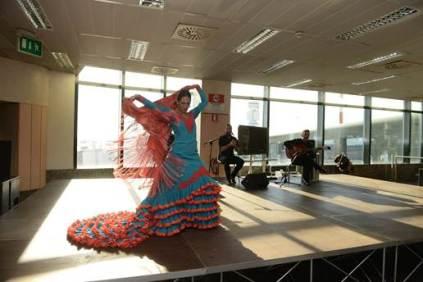 flamenco con ryanair a milano malpensa