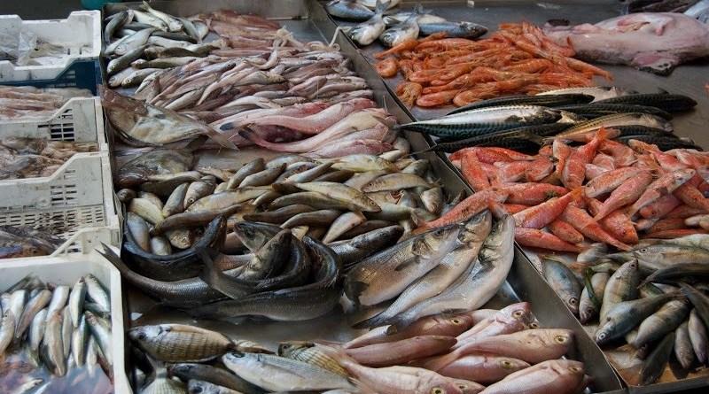 Sequestrati 570 chili di pesce nei mercati di Ballarò e Capo a Palermo, e posti i sigilli a due pescherie.