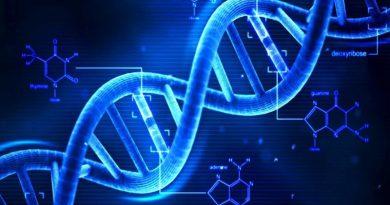 Ricercatori dell'università del Michigan hanno scoperto nell'Rna un gene, battezzato Thor, che potrebbe essere un potente strumento per aggredire il cancro
