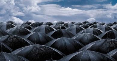 Pioggia e ombrelli
