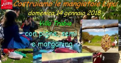 Palermo, a Villa Trabia un laboratorio Lipu per aiutare gli uccelli realizzando mangiatoie