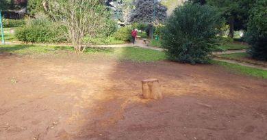 L'albero spezzato dalle raffiche di vento della scorsa settimana a villa Sperliga è stato tagliato nelle scorse ore.Il crollo è avvenuto la notte tra venerdì e sabato della settimana scorsa