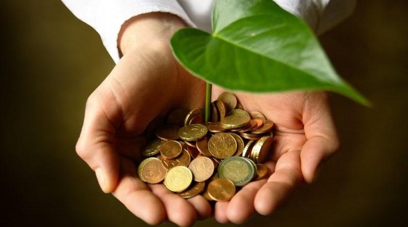"""Flai Cgil Sicilia: """"La green economy come fattore di sviluppo e di valorizzazione del lavoro forestale"""""""