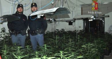 Piantagione di marijuana in casa: due arresti a Palermo