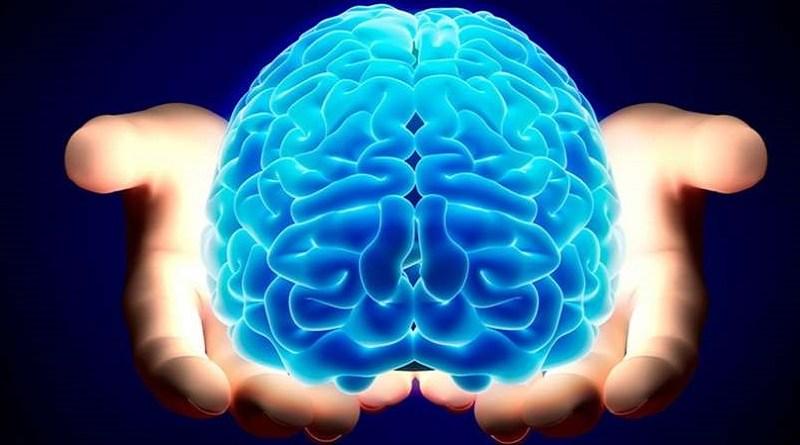 Elettrodi impiantati nel cervello riattivano il tatto in uomo paralizzato