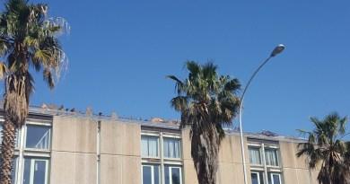 Palermo, furti di rame all'Irsap di Brancaccio: arrestate 5 persone