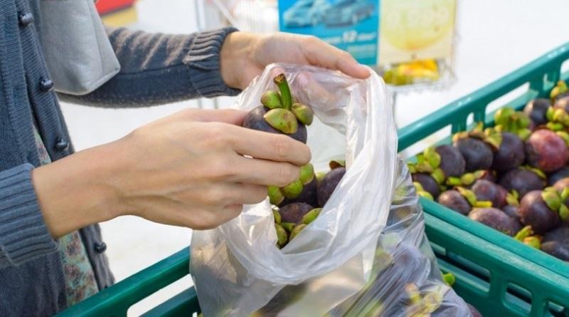 Consiglio di Stato, i sacchetti biodegradabili per frutta e verdura si potranno portare da casa