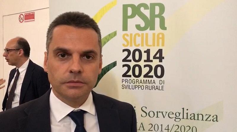Sono state pubblicate tre nuove graduatorie relative ad altrettanti bandi del PSR Sicilia 2014-2020. A darne notizia è l'assessore per l'Agricoltura Edy Bandiera