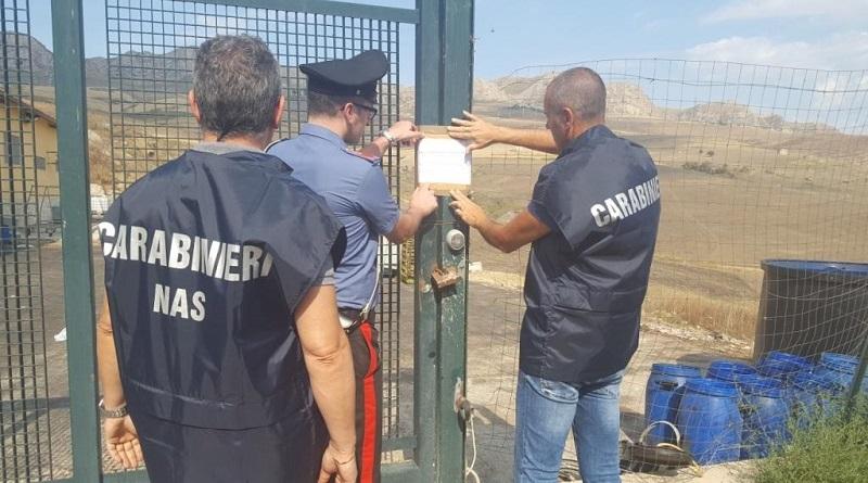 Lavoratori in nero, gestione illecita di rifiuti e furto di energia elettrica. Sequestrada dai Carabinieri un'azienda di lavorazioni di pelli a Ciminna, in provincia di Palermo