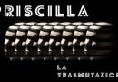 """""""Priscilla, la trasmutazione"""", un'installazione all'interno della Grotta del Ninfeo all'Arenella"""