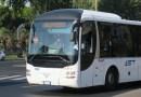 L'AST acquista nuovi bus ma licenzia autisti