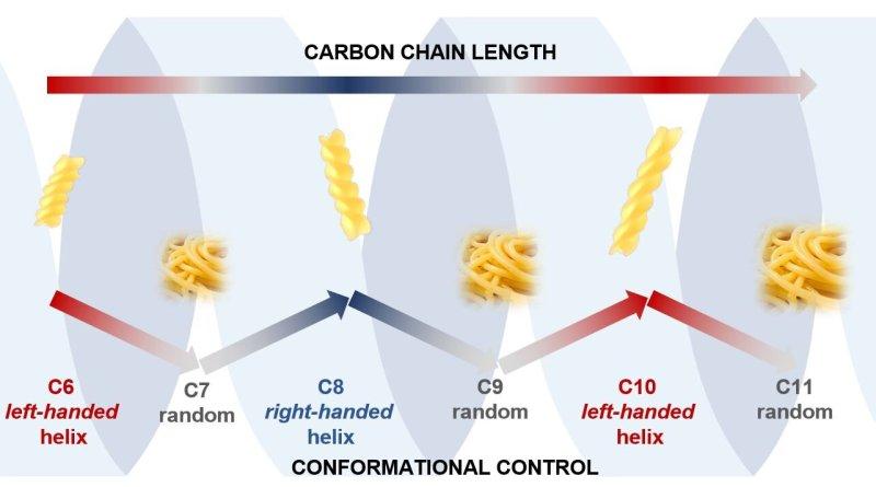 I cambiamenti in una catena di carbonio
