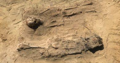 Gli archeologi hanno riesumato dei bambini sepolti con monete in bocca