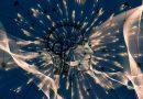 Tsunami cerebrale: l'autodistruzione del cervello