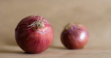 Cipolla rossa benefici salute