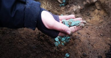Ungheria: scorta di monete d'argento del tardo Medioevo scoperta in una fattoria