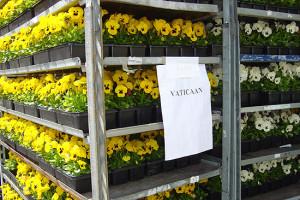 bloemen_pasen_vaticaan