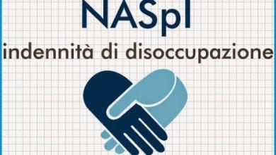 Photo of Disciplina Naspi, l'intervento di Federalberghi