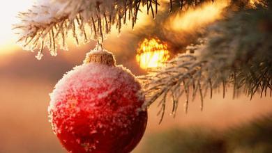 Photo of Natale a Forio, il programma di Santo Stefano