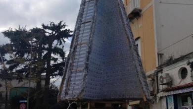 Photo of Procida, albero di Natale in Piazza della Repubblica