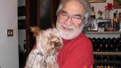 Photo of Ischia, smarrito un cane: aiutate nelle ricerche