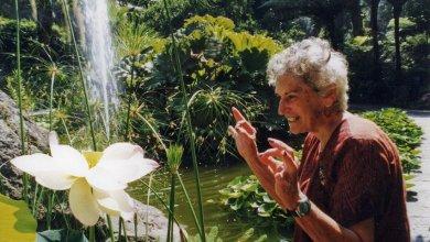 Photo of Sei anni fa, la morte di Lady Walton