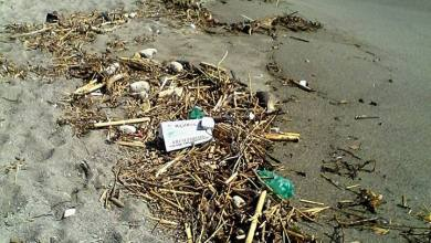 """Photo of La spiaggia dei Maronti """"affoga"""" nel degrado"""