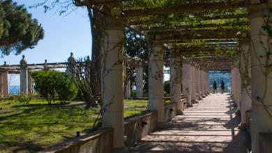 Photo of Villa Arbusto, a settembre l'inizio degli scavi grazie alla fondazione Thyssen