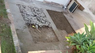 Photo of Un po' di verde al plesso di Piedimonte: via il cemento arriva l'orto
