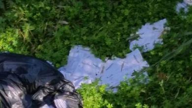 """Photo of Casamicciola, continua l'indagine sulla posta """"abbandonata"""""""