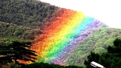 Photo of L'arcobaleno ischitano che finisce nel verde