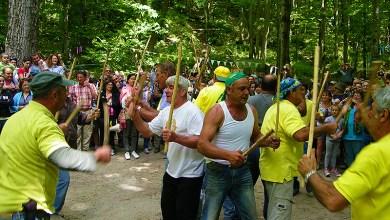 Photo of Festa della Ginestra, si rinnova l'appuntamento con la tradizionale scampagnata nel Comune di Barano