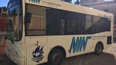 Photo of Torquato Tasso contro Eav Bus, il Tar chiede ulteriori verifiche