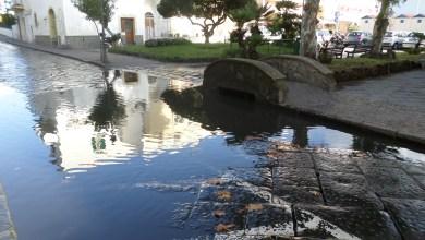 Photo of Ischia e la Mandra allagata: problema irrisolvibile o uccello del paradiso?