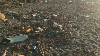 Photo of Citara, la spiaggia è irriconoscibile: eliminate quella discarica