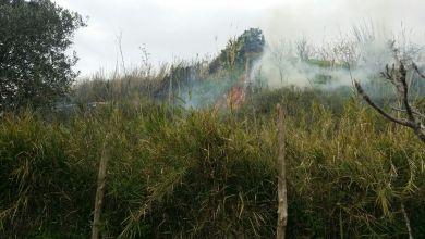 Photo of Fiamme a Barano, sul posto i vigili del fuoco