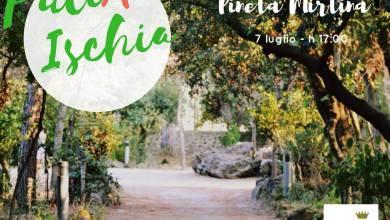 Photo of PuliAmo Ischia, si parte il 7 luglio con la Pineta Mirtina