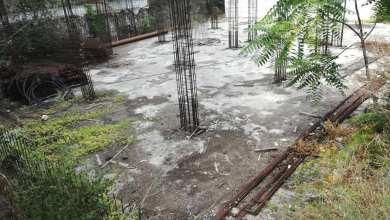 Photo of Scempio caserma Forestale, nuovo sopralluogo dei Verdi