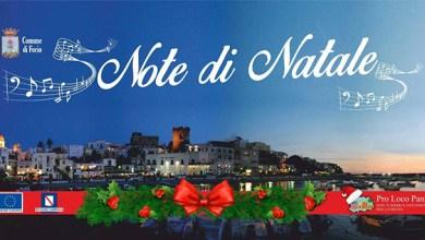 """Photo of Forio. """"Note di Natale sotto l'albero"""", ecco il cartellone"""